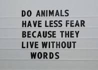 ANIMALS FEAR