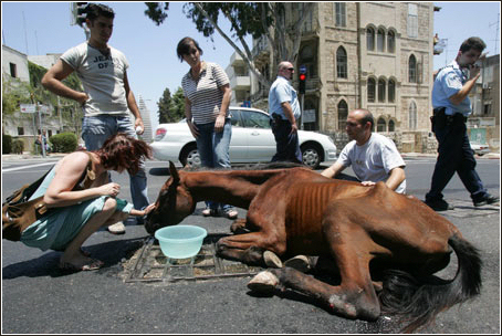 ABANDONNED - ISRAEL