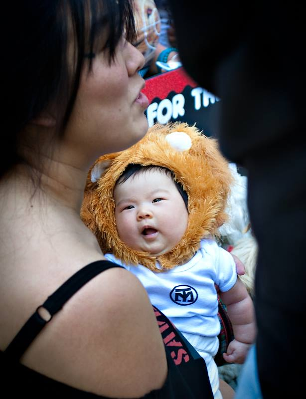 LION KIDS 2