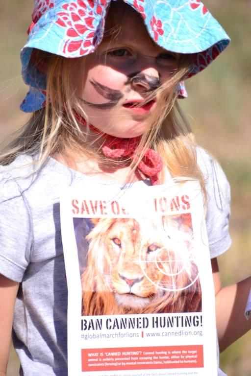 LION  KIDS A2
