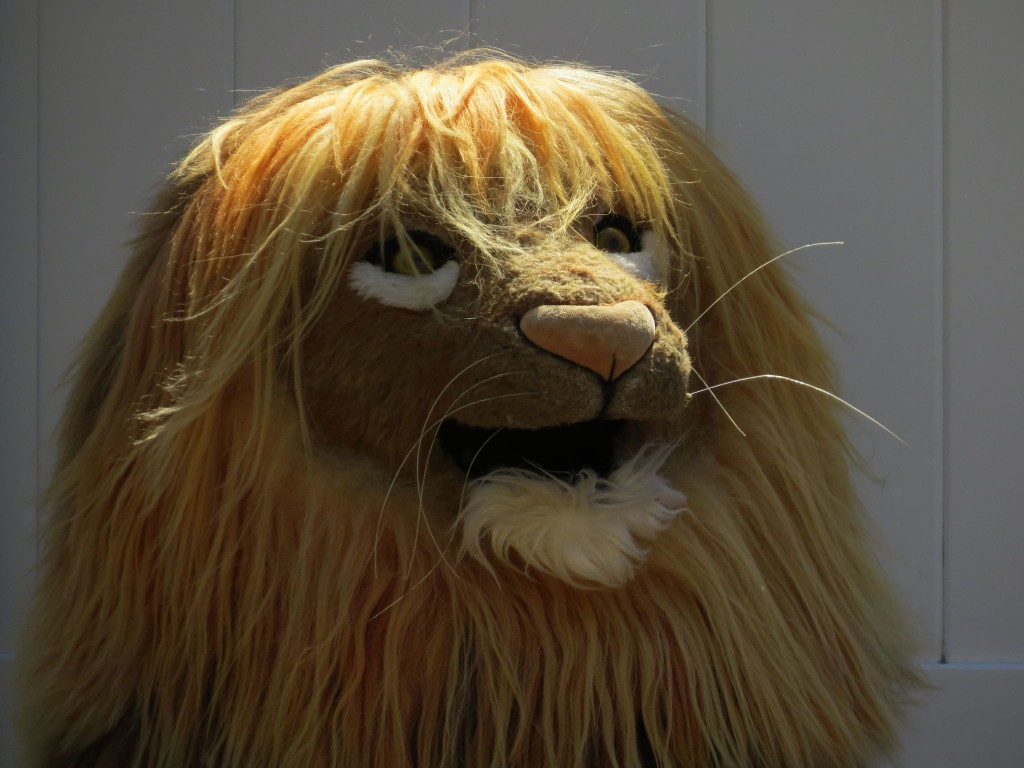 LION KIDS G