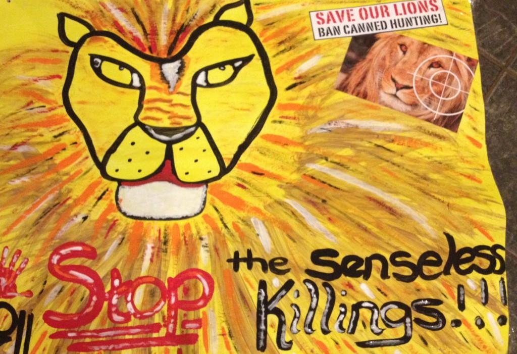LION KIDS M2