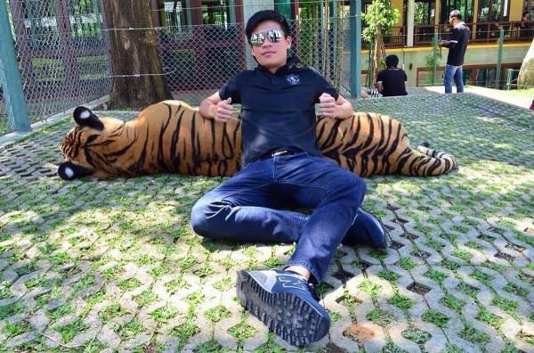 ANIMAL - CRUELTY TIGER
