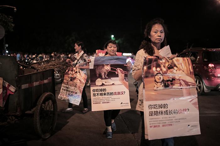 DOG - YULIN CHINESE ANIMAL  ADVOCATES